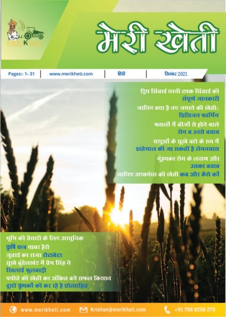 magazine_sept